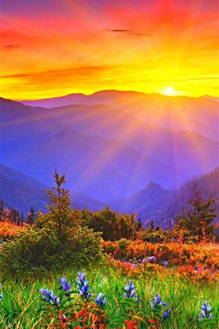 iPhone Wallpaper Sunrise, dawn, mountains, grass, flowers