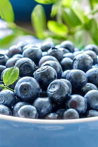 iPhone Wallpaper Blueberries, leaves, bowl