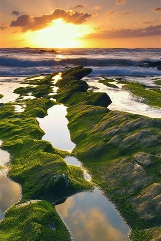 iPhone Wallpaper Spain, coast, sea, moss, sunrise