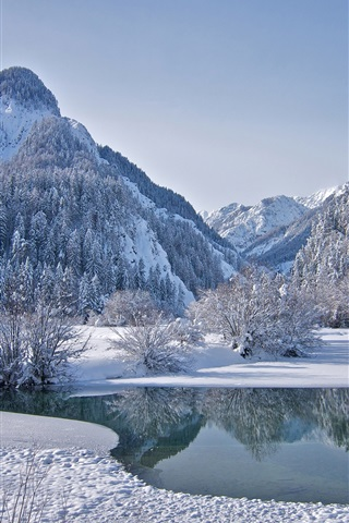 iPhone Wallpaper Winter, sky, mountains, forest, trees, lake, ice, snow
