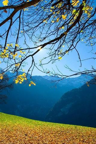 iPhone Wallpaper Autumn, trees, foliage, mountains, blue sky, sun