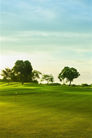 iPhone Wallpaper Golf course, green grass, trees