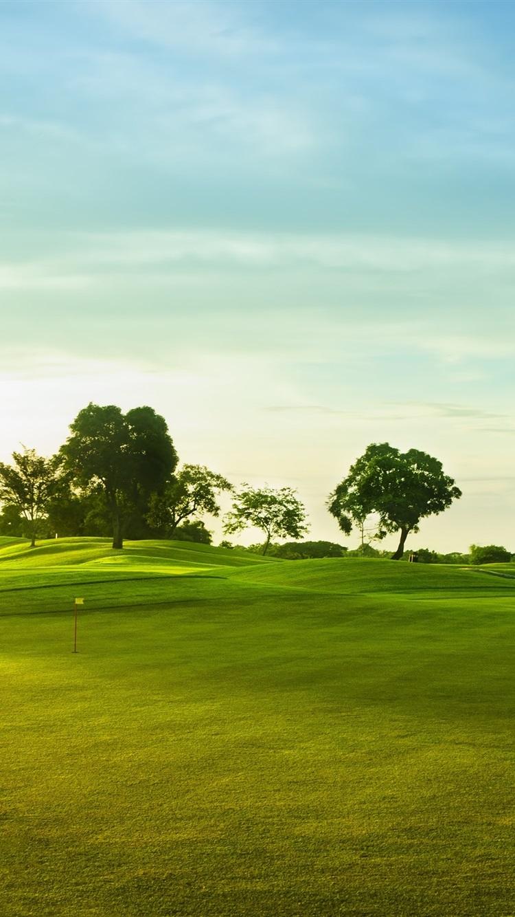壁紙 ゴルフコース 緑の草 木 2560x1600 Hd 無料のデスクトップの背景 画像