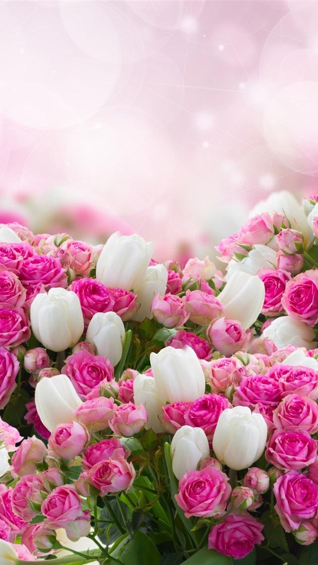 壁纸 许多花,白色郁金香,粉红玫瑰 2560x1920 Hd 高清壁纸 图片 照片