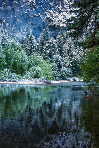 iPhone Wallpaper Nature landscape, winter, forest, National Park, river