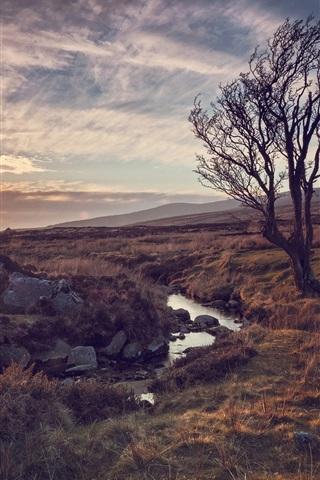 iPhone Wallpaper Nature, tree, river, stones, sun rays, sunset