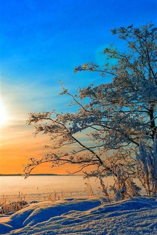 iPhone Wallpaper Winter, trees, snow, sunset, blue sky