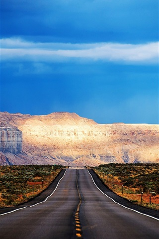 iPhone Wallpaper Arizona, USA, road, mountain, trees, blue sky
