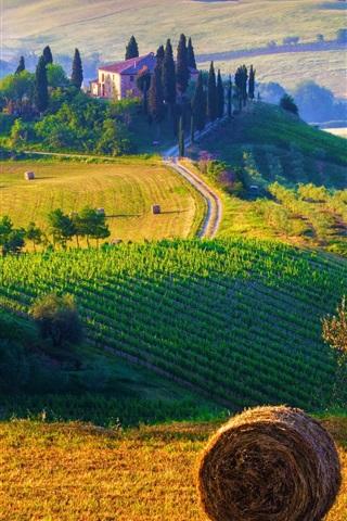 iPhone Wallpaper Italy, Tuscany, nature landscape, fields, haystacks, farms, sunrise, morning