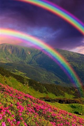 iPhone Wallpaper Nature landscape, mountains, flowers, rainbow