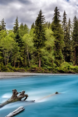 iPhone Wallpaper River, forest, trees, clouds, Washington, USA