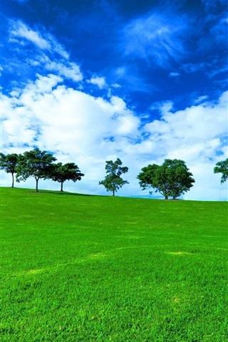 iPhone Wallpaper Trees, grass, fields, green