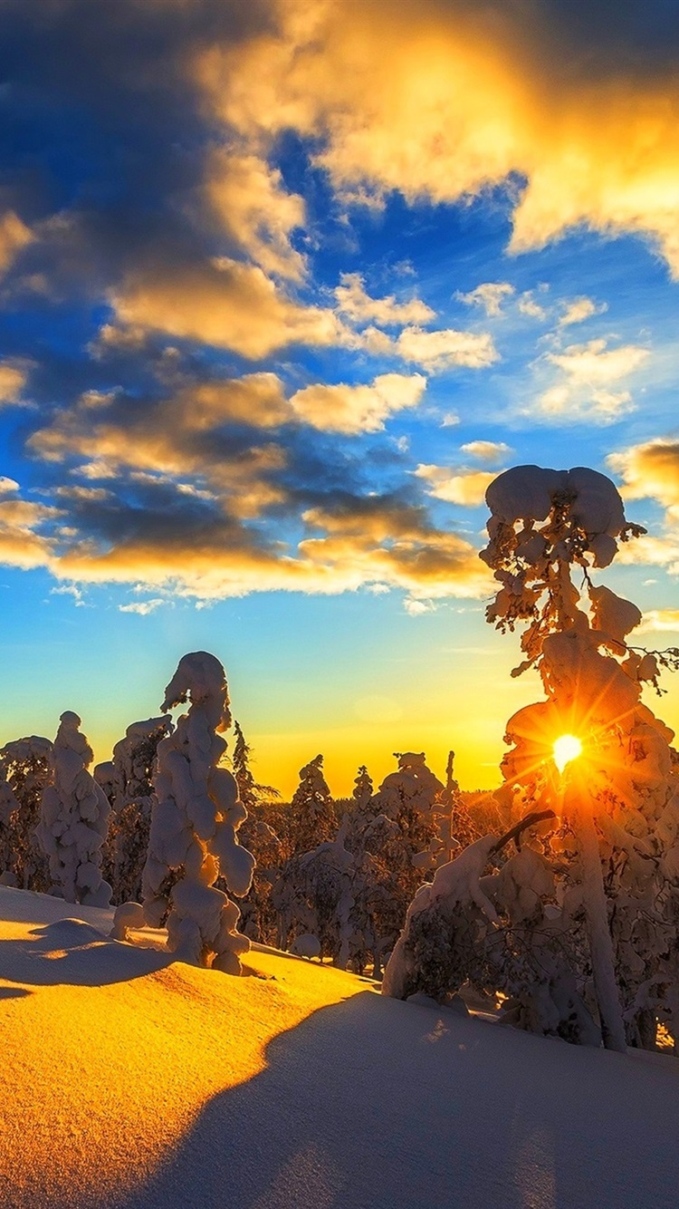 Winter Mountain Snow Trees Sky Clouds Sunset 750x1334
