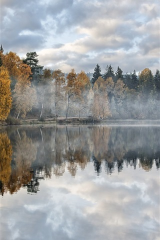 iPhone Wallpaper Autumn, lake, forest, trees, morning, mist