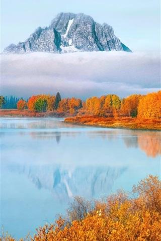 iPhone Wallpaper USA, Wyoming, Grand Teton National Park, trees, fog, autumn