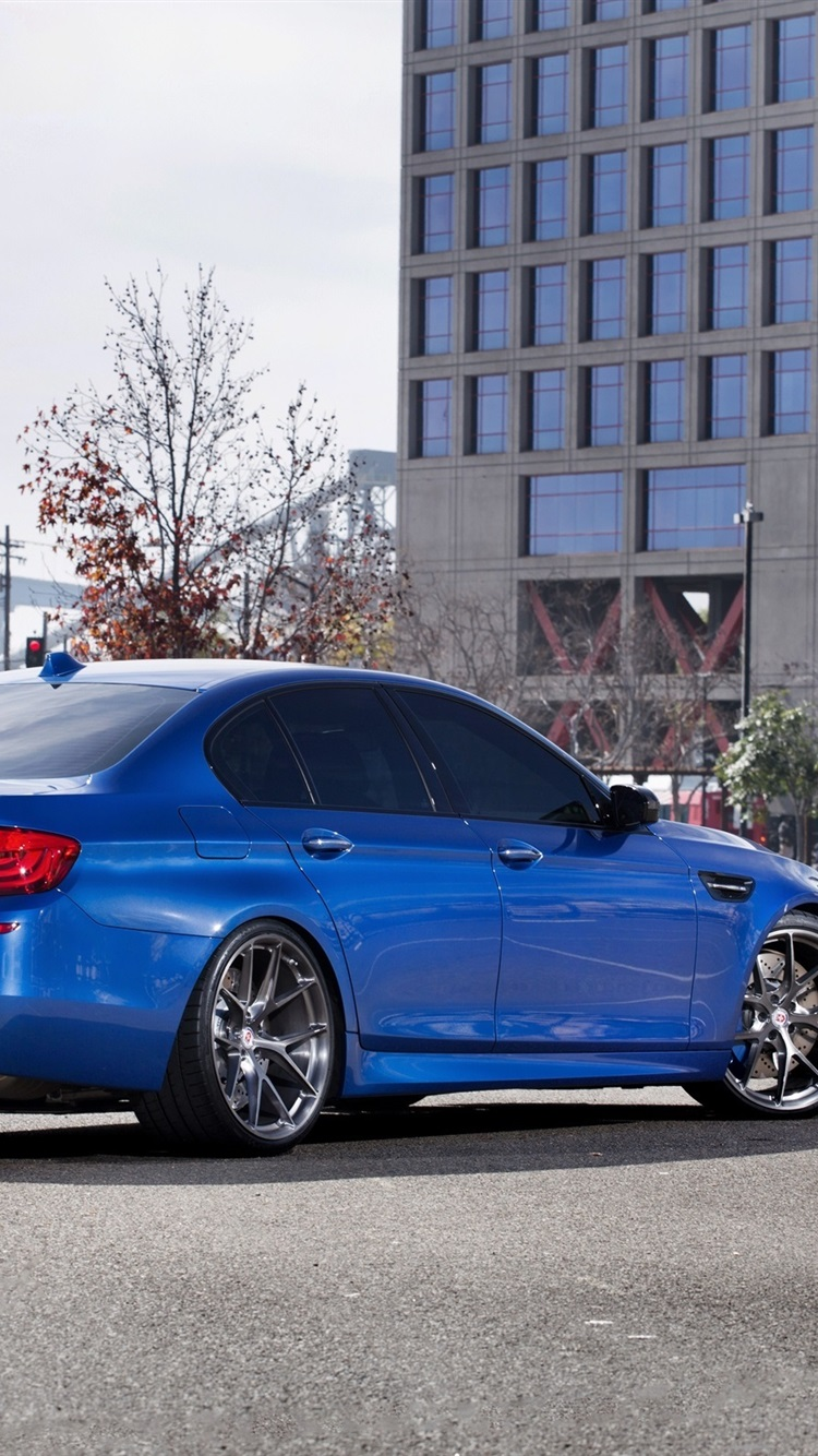 Bmw M5 F10 Blue Car Back View 750x1334 Iphone 8 7 6 6s Wallpaper Background Picture Image