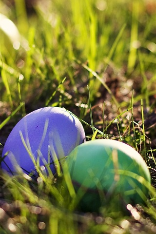 iPhone Wallpaper Easter egg in the grass