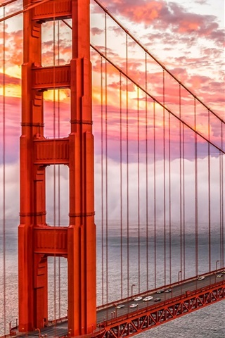 iPhone Wallpaper Golden Gate, San Francisco, USA, bridge, sea, heavy mist
