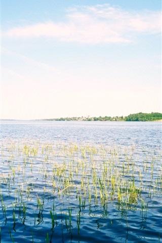 iPhone Wallpaper Russia, river, sky, Volga, grass