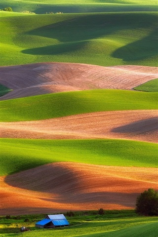 iPhone Wallpaper Steptoe Butte State Park, USA, fields, trees, house