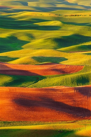 iPhone Wallpaper Steptoe Butte State Park, United States, valle, fields, beautiful scenery