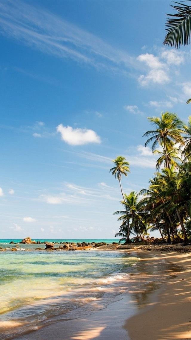 トロピカル 浜 砂 ヤシの木 岩 海 640x1136 Iphone 5 5s 5c Se 壁紙 背景 画像