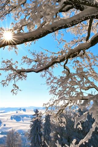 iPhone Wallpaper Winter, twigs, thick snow, sun, Switzerland