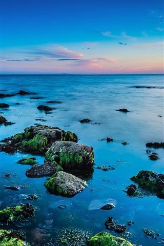 iPhone Wallpaper Beautiful coast, sea, rocks, algae, skyline, sunrise
