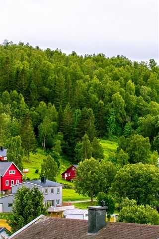 iPhone Wallpaper Norway, town, mountains, houses, trees, grass