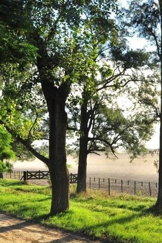 iPhone Papéis de Parede Verão, árvores, cerca, estrada, rio