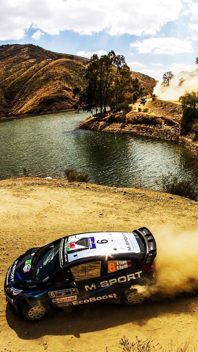 Wallpaper Ford Fiesta WRC Rally, Car, Dust 1920x1200 HD