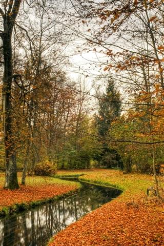 iPhone Wallpaper Park, autumn, trees, river, nature landscape