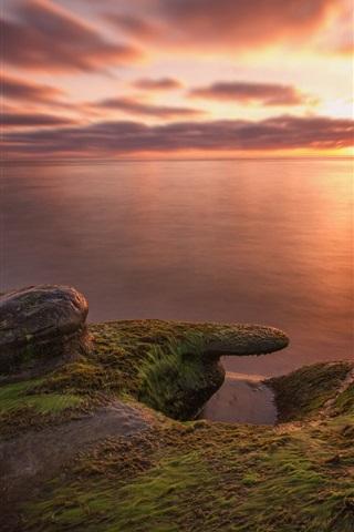 iPhone Wallpaper Sea, beach, stones, seaweed, morning, dawn, sunrise