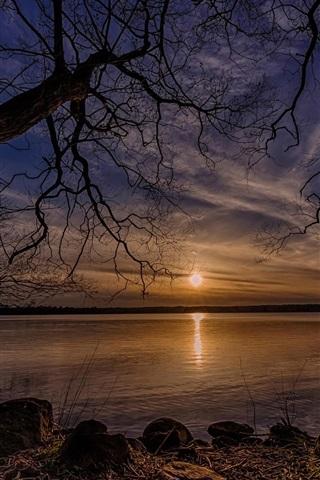 iPhone Wallpaper Dry trees, lake, sun, sunset, Denmark
