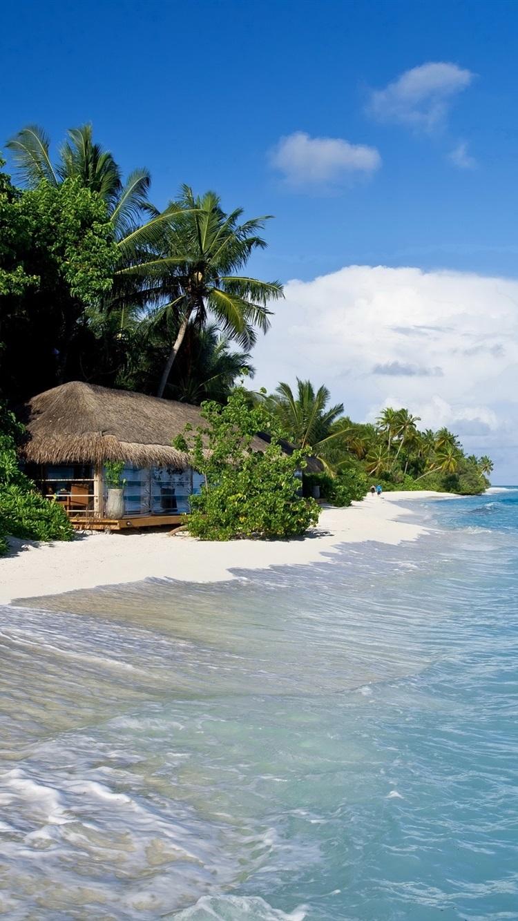 Maldives Tropical Sea Beach Palm Trees Hut 750x1334