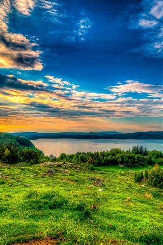 iPhone Wallpaper Sky, clouds, sunset, lake, trees, grass, rocks, sheep