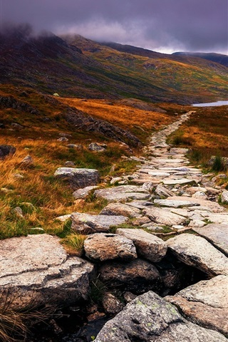 iPhone Wallpaper Wales, Great Britain, autumn, stone, path, clouds, grass