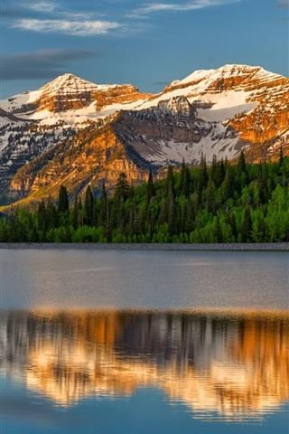 iPhone Wallpaper Mountains, lake, trees, water reflection
