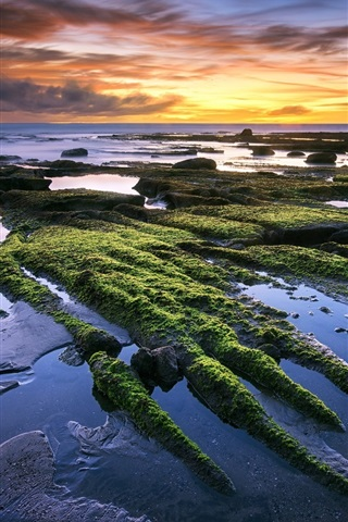 iPhone Wallpaper Tanah Lot, Bali, Indonesia, sea, beach, sunset, beautiful scenery