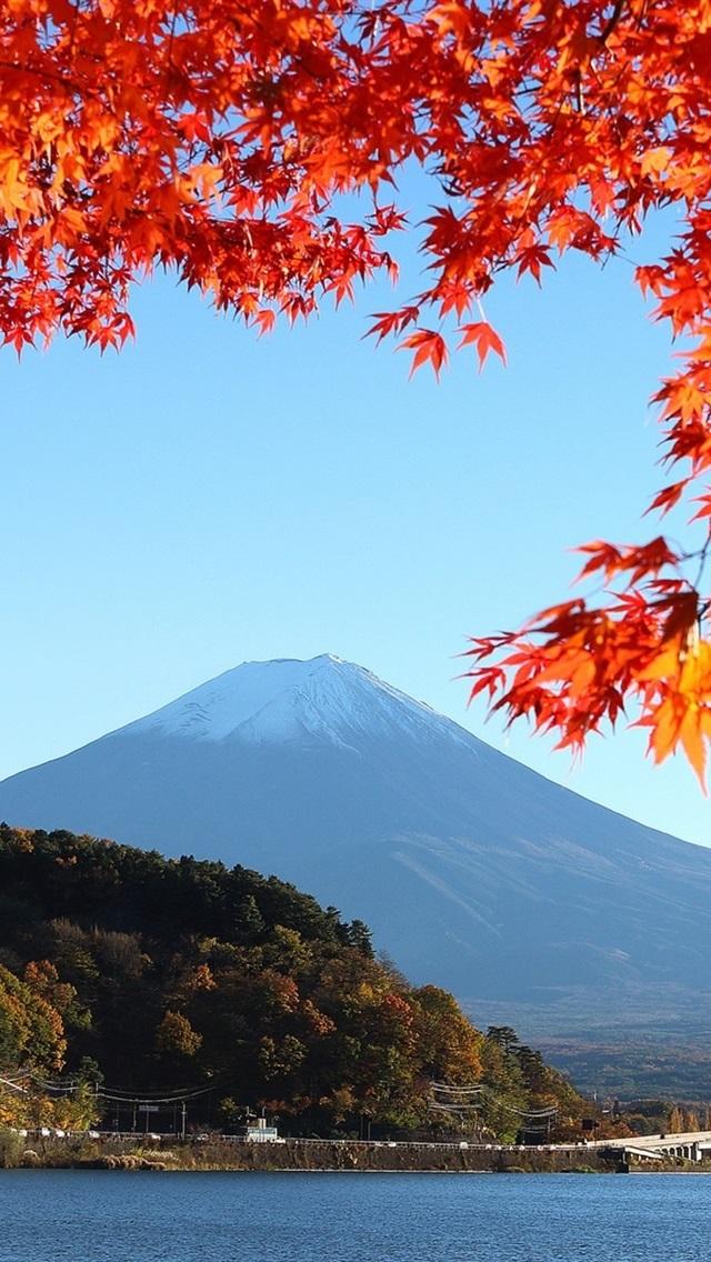 Wallpaper Japan Mount Fuji Autumn Red Leaves 1920x1200 Hd