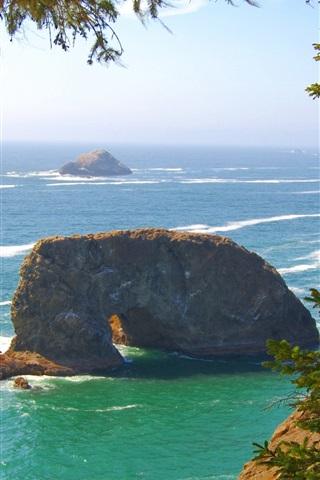 iPhone Wallpaper Pacific coast, sea waves, rocks, trees, Oregon, USA