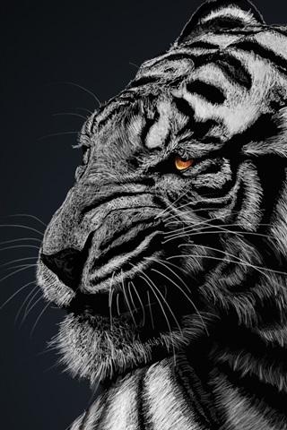 iPhone Wallpaper White tiger, black background