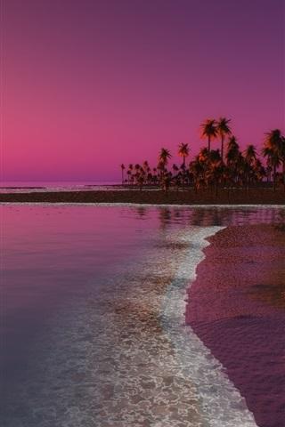 iPhone Wallpaper Beach, sunset, palm trees, sea, dusk