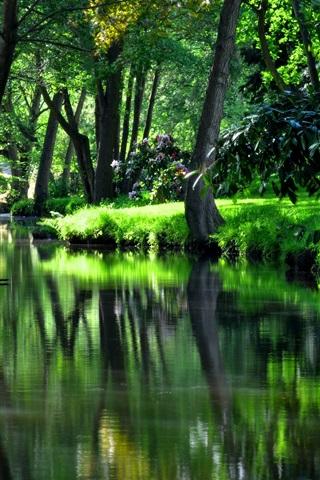 iPhone Wallpaper Summer, park, green, trees, grass, river