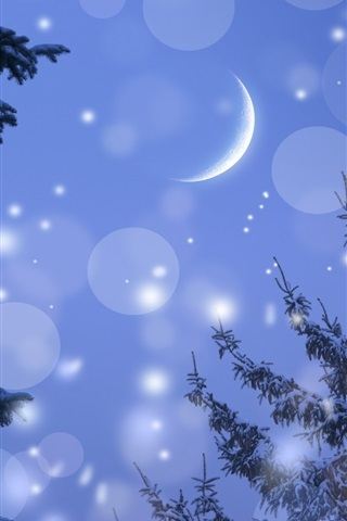 iPhone Wallpaper Winter, moon, night, trees, snow, glare
