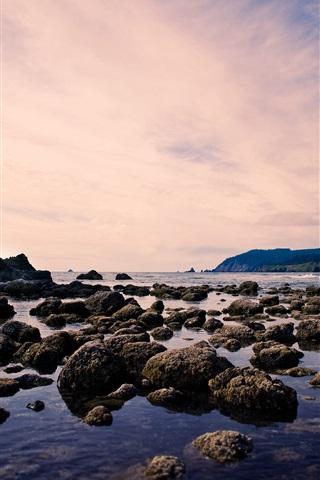 iPhone Wallpaper Beach, sea, rock, birds, sky, dusk