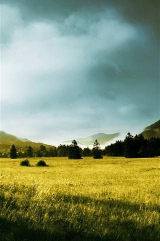 iPhone Wallpaper Morning, trees, sunlight, hills, grass