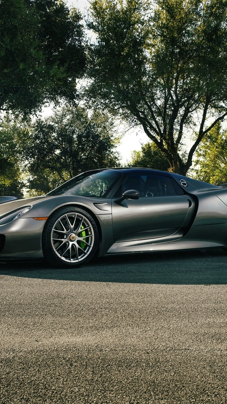 Wallpaper Porsche 918 Spyder Silvery Supercar Road Trees