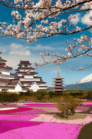 iPhone Wallpaper Aizuwakamatsu Castle, Fukushima, Japan, cherry flowers, park