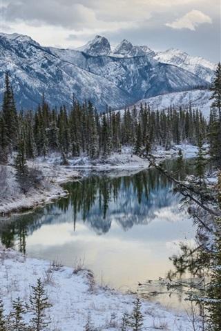 iPhone Wallpaper Canadian Rockies, Jasper National Park, Alberta, Canada, winter, river, trees